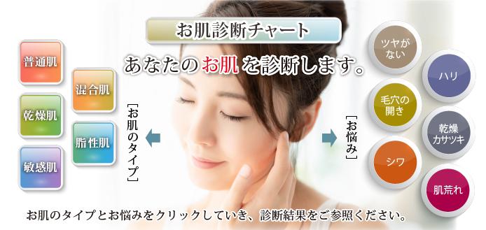 無添加化粧品 お肌診断チャート